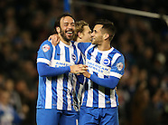 Brighton and Hove Albion v Leeds United 240215