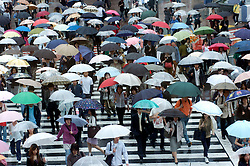 Many people crossing Hatchiko crossing in the rain with umbrellas in central Tokyo