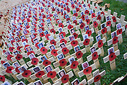 Crosses and poppies mark fallen soldiers killed in Iraq, seen during Remembrance weekend at Westminster Abbey, London.