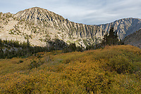 This basin at 9,000 feet in the Crazy Mountains had lots of colorful foliage when I visited in September.