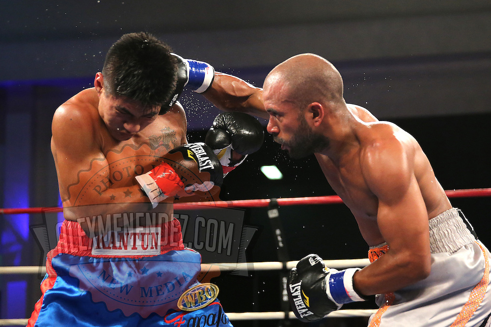 "Jonathan ""Pitbull"" Vidal (Grey shorts) fights Juan Kantun during a ""Boxeo Telemundo"" boxing match at the Kissimmee Civic Center on Friday, July 18, 2014 in Kissimmee, Florida.  Vidal won the bout by TKO. (AP Photo/Alex Menendez)"