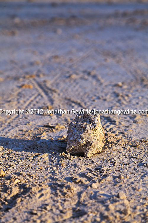 An isolated small rock sits in an area of sandy soil. WATERMARKS WILL NOT APPEAR ON PRINTS OR LICENSED IMAGES.