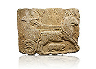 Hittite monumental relief sculpted orthostat stone panel. Limestone, Karkamıs, (Kargamıs), Carchemish (Karkemish), 900-700 B.C. Hunting carriage. Anatolian Civilisations Museum, Ankara, Turkey.<br /> <br /> Two human figures; one handling the carriage, the other throwing arrows. Both figures are wearing a headdress shaped like a skullcap. The dagger at the waist of the figure throwing arrow draws attention. There is an animal between the legs of the horse having an aigrette over its head.  <br /> <br /> Against a white background. .<br />  <br /> If you prefer to buy from our ALAMY STOCK LIBRARY page at https://www.alamy.com/portfolio/paul-williams-funkystock/hittite-art-antiquities.html  - Type  Karkamıs in LOWER SEARCH WITHIN GALLERY box. Refine search by adding background colour, place, museum etc<br /> <br /> Visit our HITTITE PHOTO COLLECTIONS for more photos to download or buy as wall art prints https://funkystock.photoshelter.com/gallery-collection/The-Hittites-Art-Artefacts-Antiquities-Historic-Sites-Pictures-Images-of/C0000NUBSMhSc3Oo