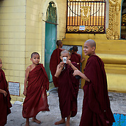 May 09, 2013 - Yangon, Myanmar: Buddhist novices take photographs during a visit to Sule Pagoda in central Yangon. CREDIT: Paulo Nunes dos Santos