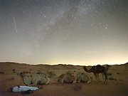 A camel herder camps out in the sand under a starry sky in the Rub' al Khali or Empty Quarter, the largest uninterrupted sand mass in the world.