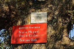 Troje, Troy, Truva, Çanakkale, Turkey