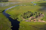 Bimitchi Morupa<br /> Wetland<br /> North GUYANA<br /> South America