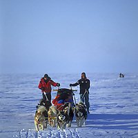 INTERNATIONAL ARCTIC PROJECT, Expedition Leader Will Steger & Ulrik Vedel with sled dogs.