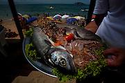 Buzios_RJ, Brasil..Frutos do mar na praia de Joao Fernandes em Buzios, Rio de Janeiro...The seafood in the Joao Fernandes beach, Buzios in Rio de Janeiro...Foto: LEO DRUMOND / NITRO