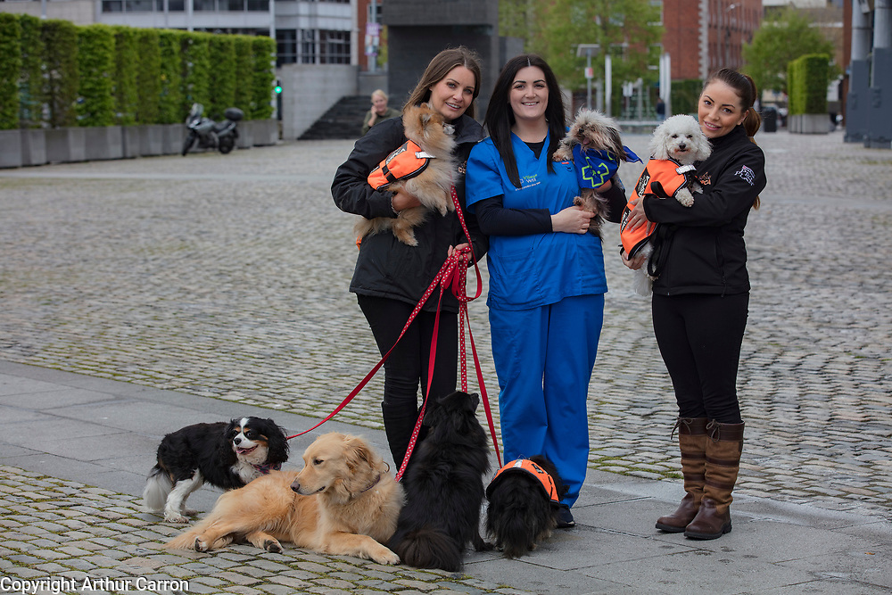 NO FEE PICTURES                                                                                                                                            9/5/19 Natasha Eames, Fundraising and events co-ordinator DSPCA, Lesley Barber, Village Vets and Jodie Pezzilli at the launch of Ireland's favourite animal friendly event, Pets in the City, which will take place in Dublin's Smithfield Square on Sunday May 19th from 1130am to 430pm. Picture: Arthur Carron