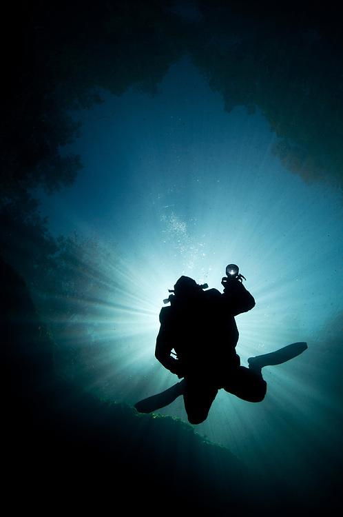 A SCUBA diver descends into a spring in Florida.