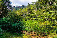 Indonesia, Java, Lembang. In Maribaya you will find waterfalls, hotsprings and a beautiful landscape.