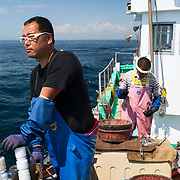 Hasegawa-san father and son team preparing bait and lines for deep-sea fishing on a sunny day in Suruga Bay, Japan