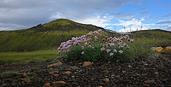 09-07-2014 ISL: Iceland Diabetes Challenge Dag 5, Emstrur<br /> Van Alftavatn naar Emstrur / Alftavatn een prachtige locatie om een nachtje te blijven.