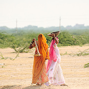 Women going to work in the fields at Bishnoi region