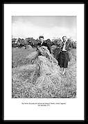 Frøknene Ryan hjelper til med innhøstingen på Thurles, Tipperary County (fylke), 2 september 1953. Hverdagslivet i Irland på 1950 tallet var tungt og alle måtte hjelpe til. Se bilder fra denne.perioden hos Irishphotoarchive.ie.