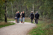 Nederland, Well, 18-10-2020 Herfstdag in de herfstvakantie in het natuurgebied de  Maasduinen van staatsbosbeheer  Ondanks de oproep thuis te blijven vanwege het verspreidingsgevaar van het coronavirus zijn veel mensen aan de wandel. Wandelaars prberen anderhalve meter afstand te houden.FOTO: FLIP FRANSSEN