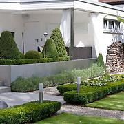 Modern Garden 389