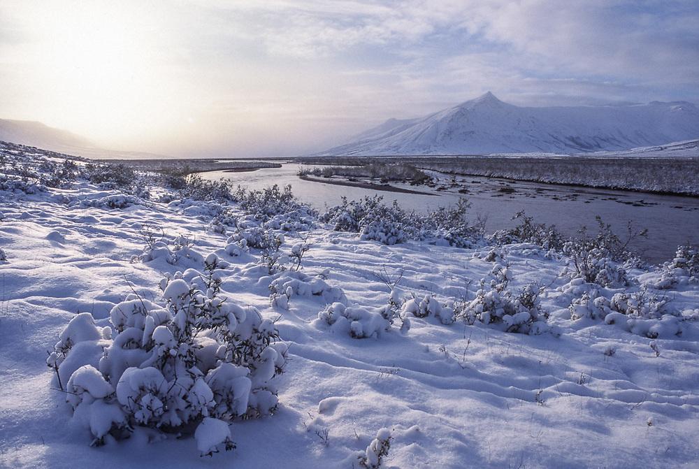 Landscape after a snowfall, Noatak River area, Gates of the Arctic National Park, AK, USA