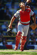 CHICAGO - 1988:  Bob Boone of the California Angels catches against the Chicago White Sox during an MLB game at Comiskey Park in Chicago, Illinois.  Boone played for the Angels from 1982-1988. (Photo by Ron Vesely)