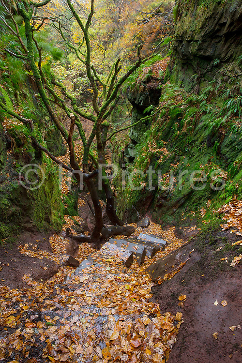 Steep steps leading into Devils Pulpit on the 3rd November 2018 in Dumgoyn in the United Kingdom.