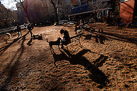 Yoon Shin enjoys a moment with her dog, Olive, Thursday, Jan. 12, 2006 at George's Dog Run in Washington Square Park in New York. Temperatures in New York are expected to top an unseasonably high 60 degrees Thursday. .