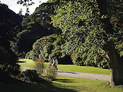 A view of the gardens in autumn at Muckross House, Killarney in County Kerry.Picture by Don MacMonagle *** Local Caption *** © MacMonagle, Photography.www.macmonagle.com.email: info@macmonagle.com.6 Port Road, Killarney, County Kerry, Ireland.Tel: 353 6432833