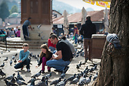 A pigeon looks on as a man and two children feed other pigeons in Sarajevo, Bosnia and Herzegovina