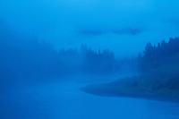 Hoh River, Olympic National Park, WA