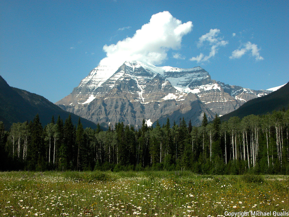 Mt Robson and meadow from the meadow's edge in Mt. Robson Provincial Park