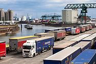 a gantry crane at the container terminal in the Rhine port Niehl, loading onto freight trains and trucks, Cologne, Germany.<br /> <br /> Portalkran am Container-Terminal im Niehler Hafen, Verladung auf Gueterzuege und LKW, Koeln, Deutschland.