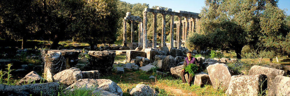 TURKEY, GREEK AND ROMAN CULTURES EUROMOS; Temple of Zeus, 2c. AD, built in Corinthian style on a site occupied from 600BC-200AD; near Milas