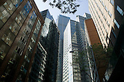 City Buildings,Bligh Street, Sydney Australia