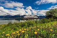 Holland America Line's MS Zaandam cruise ship docked in Haines, southeast Alaska USA.