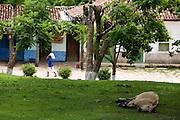 Serro_MG, Brasil...Comunidade de Sao Goncalo do Rio das Pedras na cidade de Serro, Minas Gerais...The Sao Goncalo do Rio das Pedras community in Serro, Minas Gerais...Foto: LEO DRUMOND / NITRO