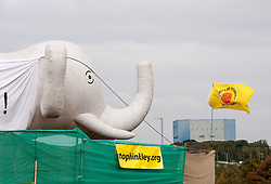 """© Licensed to London News Pictures. 19/10/2015. Hinkley Point, Somerset, UK.  Anti-nuclear protest by the """"Osborne's Folly"""" (after the Chancellor George Osborne) group, protesting against the proposed new nuclear power station Hinkley C and against Chinese investment in the project.  The group has occupied a roundabout near the site and erected an inflatable white elephant with a banner written in Chinese and say they want to send a message to the visiting Chinese President Xi Jinping that EDF's Hinkley C would be """"a bad investment"""" for the Chinese state. They say that the stalled project has become """"Osborne's Energy Folly"""" and should now be abandoned.  Theo Simon, one of the campaigners said: """"""""Ironically, the Chinese are leading the world in renewable energy investment in their own country, where there is also a growing anti-nuclear movement"""". Photo credit : Simon Chapman/LNP"""