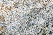 Lichen polygon pattern on rock. White Mountains, NH, USA. Kancamagus Highway (NH Route 112) is in White Mountain National Forest. The White Mountains (a range in the northern Appalachian Mountains) cover a quarter of the state of New Hampshire.