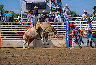 Rodeo Event: Bull riding