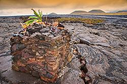 Lava Stone Hawaiian Altar or Lele Ho`okau or Hookau on lava field off Saddle Roads, number of volcanic cinder cones in the background, Mauna Kea, Big Island, Hawaii