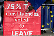 A Brexiteer protestor voices his objections to the handling of Brexit/Brussels negotiations protest on College Greeen in Westminster, the morning after another of Prime Minister Theresa May's Brexit deal votes failed again in Parliament, on 13th March 2019, in London, England.