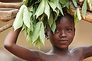 A girl carries firewood and cassava leaves on her head in the village of Kawejah, Grand Cape Mount county, Liberia on Friday April 6, 2012.