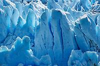 Los Notros, Glacier