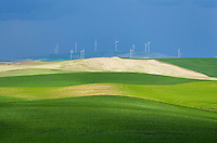 Wind Turbines set amidst the rolling hills of green wheat fields in the Palouse region of the Inland Empire of Washington