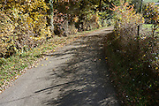 small countryside road with leaves and shadow during autumn season