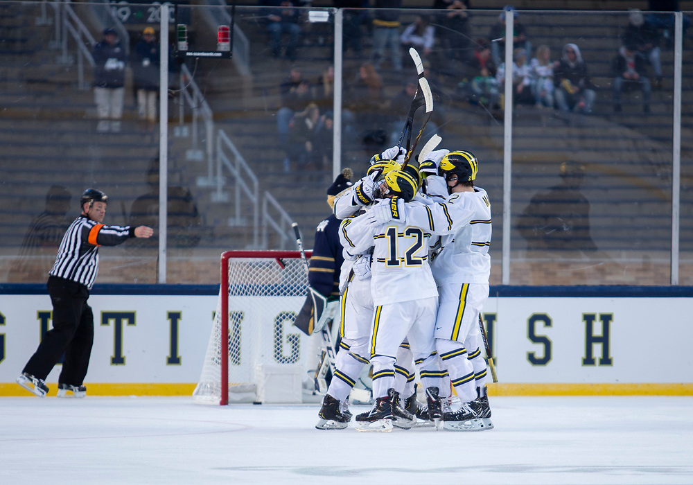 January 05, 2019:  Michigan players celebrate goal during NCAA Hockey game action between the Michigan Wolverines and the Notre Dame Fighting Irish at Notre Dame Stadium in South Bend, Indiana.  Michigan defeated Notre Dame 4-2.  John Mersits/CSM