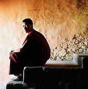 Portrait of young monk sat in doorway of monastery, Ladakh, India