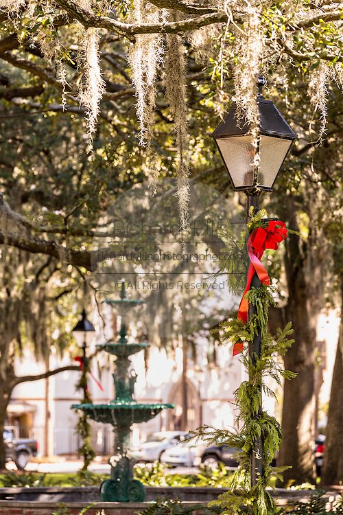 Christmas decorations in Lafayette Square Savannah, GA.