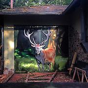 Rudi der Hirsch. #oberursel #orschel #germany #rudiderhirsch #forest #wood #animal #nature #runningtrack #whateverthatmeans #stag #dailylife #painting #light #shadow