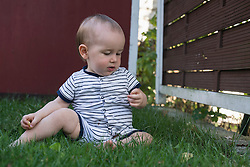 Baby boy exploring a leaf of grass in lawn, Munich, Bavaria, Germany