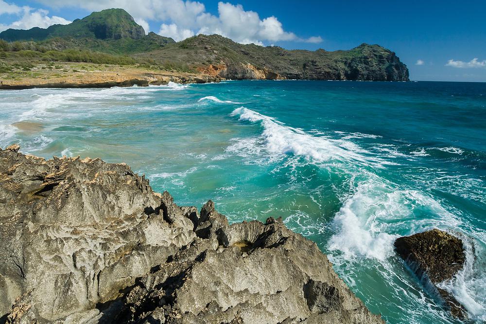 East coast beach north of Kapa'a.